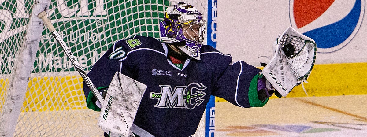 COMETS SIGN GOALTENDER CONNOR LACOUVEE TO A PTO